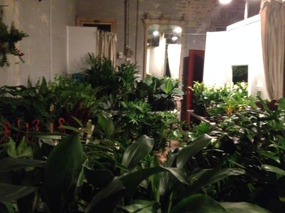 Plant Sale 2-1